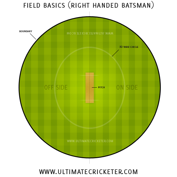 Ultimate Cricketer - Cricket Field Basics